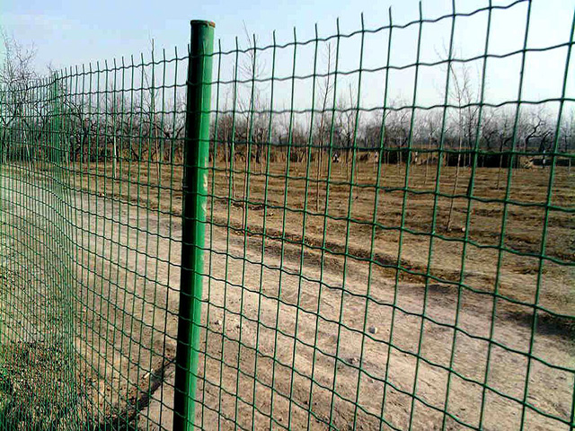 散养鸡护栏网厂